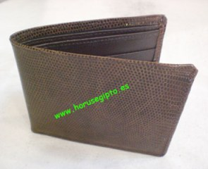 Cartera_billeter_51c1862948735
